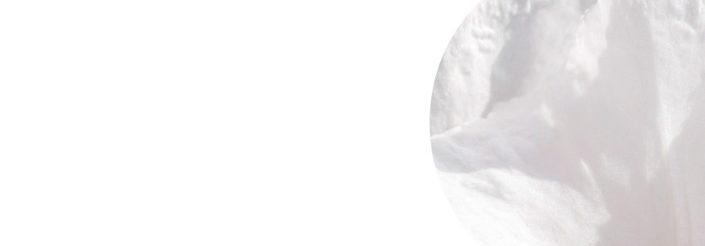 Extra biały 9003 705x246